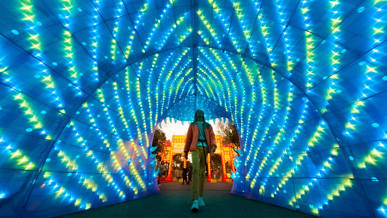 Dragon Lights Festival