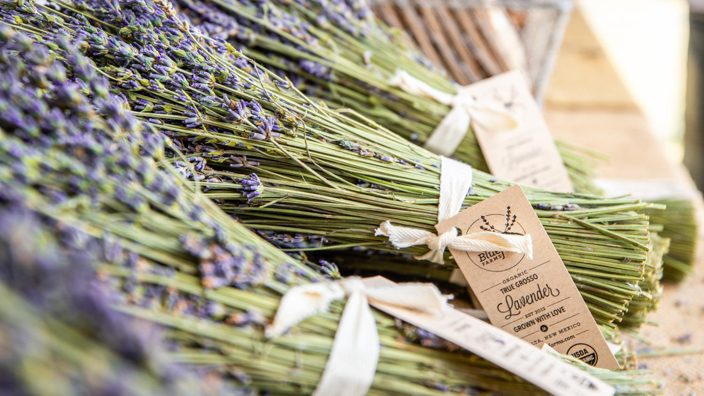 Lavender in the Village